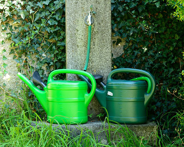 2 watering cans