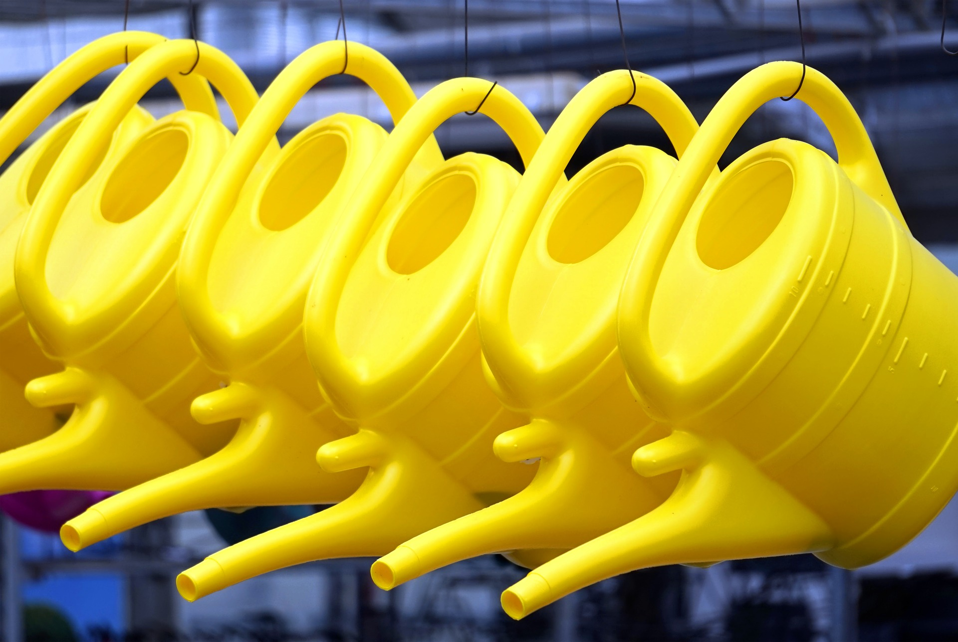 Hanged yellow watering cans